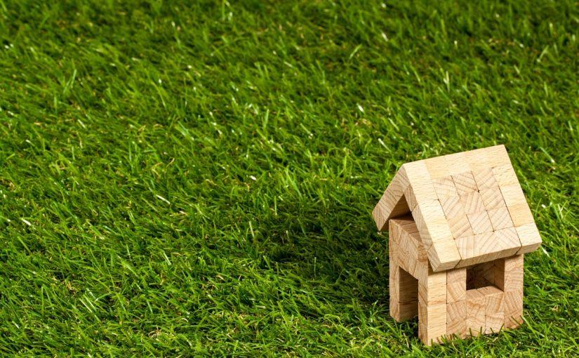 systemy dachów zielonyh